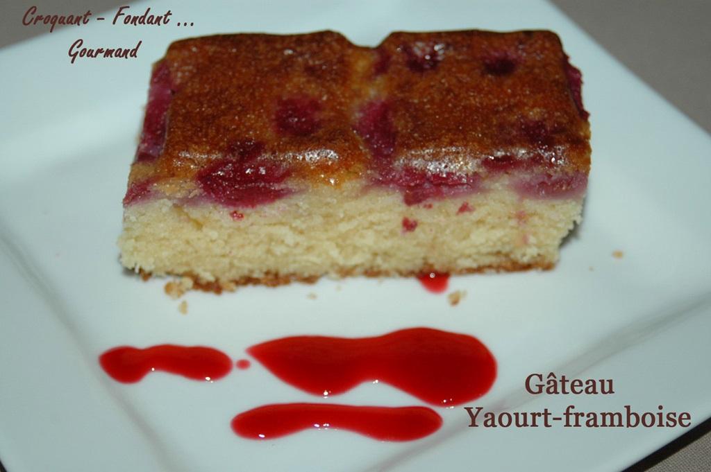 Gâteau yaourt-framboise DSC_1458_9392 (Copy)