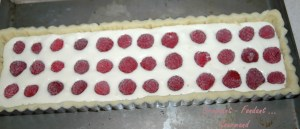 Cheesecake aux framboises - DSC_2133_10054