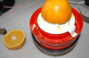 Espumas de choco-orange -DSC_3130_11325
