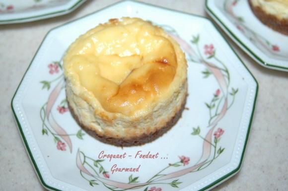 Petits cheesecake - DSC_3424_11615