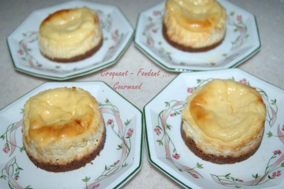 Petits cheesecake - DSC_3426_11617