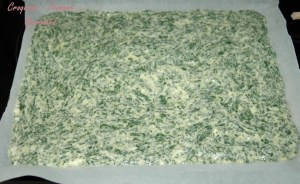 Enroulé de feuilles de blettes -DSC_5904_14262