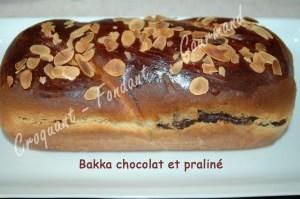 Babka chocolat et praliné -DSC_7406_15798