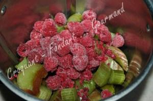 Framboisier glacé au coulis de rhubarbe -DSC_7878_16265