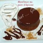 Moelleux au pain d'épices -DSC_7707_16095