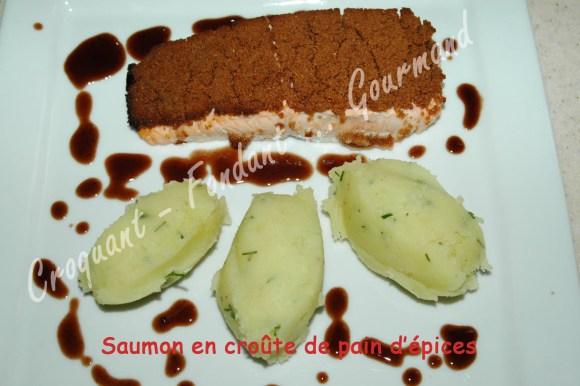 Saumon en croûte de pain d'épices - DSC_7711_16099