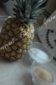 Ananas rôti et glace au pain d'épices -DSC_8136_16644