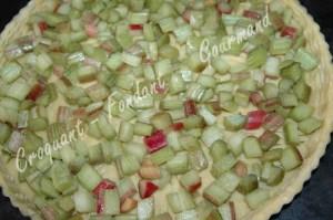 Tarte meringuée à la rhubarbe - DSC_8473_16981