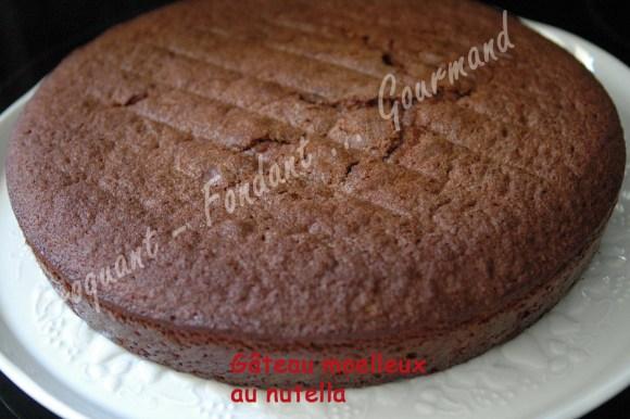Gâteau moelleux au nutella - DSC_0135_18633