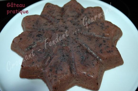Gâteau pratique - DSC_8815_17321