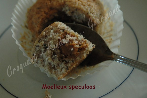 Moelleux speculoos DSC_9912_18415