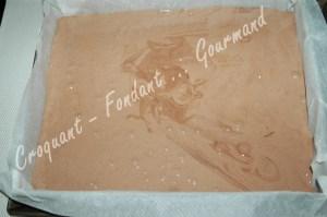 Gâteau 5 minutes au chocolat - DSC_7087_15480