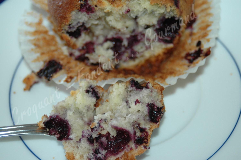 Muffins myrtilles-framboises - DSC_8904_17410
