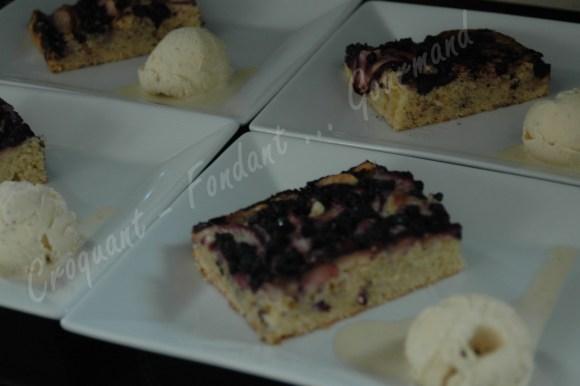 Gâteau nectarine-myrtilleDSC_0563_19057