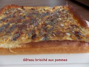 Gâteau brioché aux pommes - DSCN0834_20109