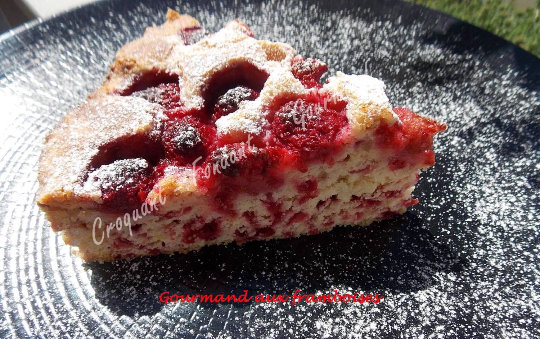 Gourmand aux framboisesDSCN7546