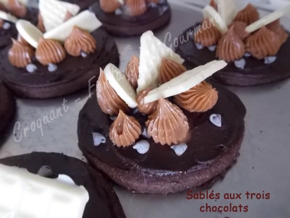 Sablés aux 3 chocolats DSCN1257_20528