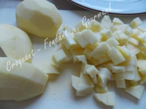 Aumonières de pommes DSCN1883_21759