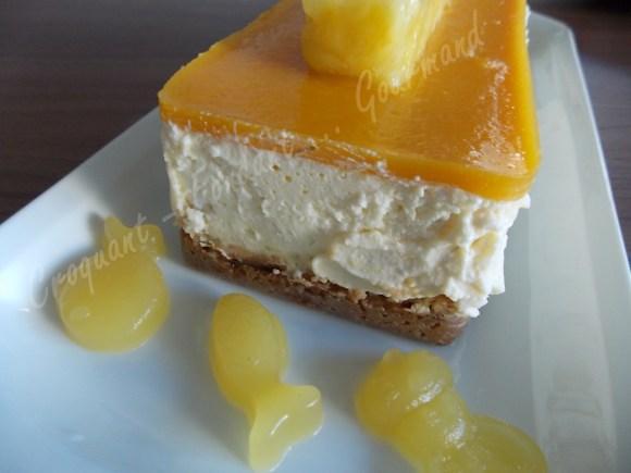 Cheesecake exotique DSCN5257_25285