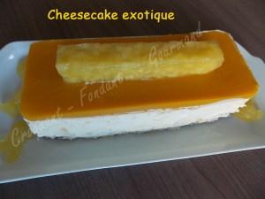 Cheesecake exotique DSCN5258_25286