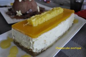 Cheesecake exotique _DSC0317_25225