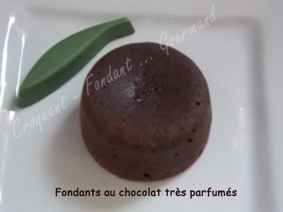 Fondants au chocolat très parfumés DSCN4303_24266