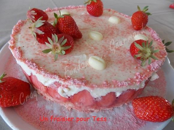 Un fraisier pour Tess DSCN6288_26344