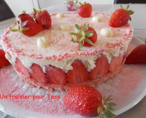 Un fraisier pour Tess DSCN6293_26349