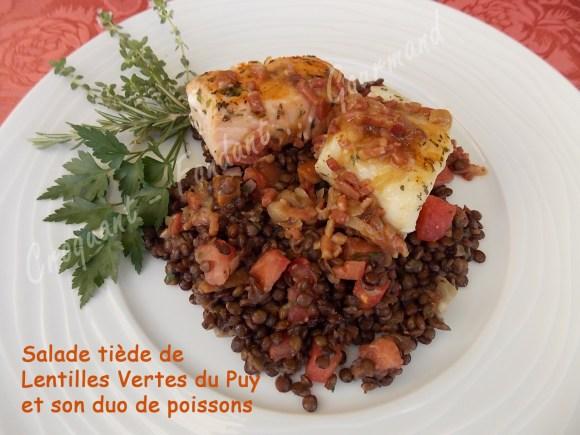 Salade de lentilles au duo de poissons DSCN7471_27615