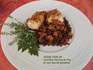 Salade tiède de lentilles et son duo de poissons DSCN7472_27616
