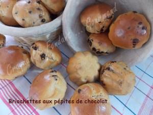 Briochettes aux pépites de chocolat DSCN8664_28840