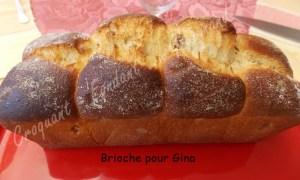Brioche pour Gina DSCN7634_27776