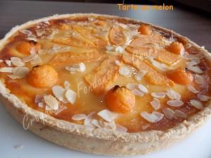 Tarte au melon DSCN8910_29086