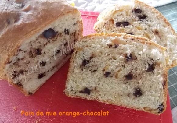 Pain de mie orange-chocolat DSCN1150_30711