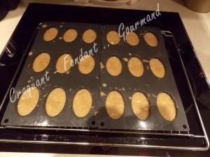 Petits pains d'épices DSCN1027_30565