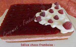 Délice choco-framboise - DSCN1989_31652
