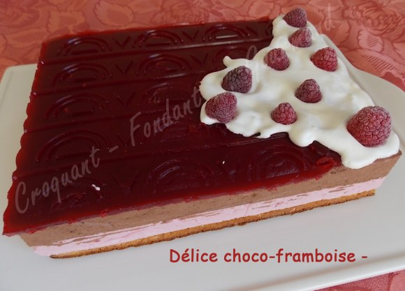 Délice choco-framboise - DSCN1990_31653
