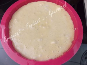Gâteau choco tout blanc DSCN7278_27397