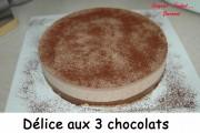 Délice aux 3 chocolats Index - DSC_4795_2347