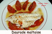 Daurade Maltaise Index - DSC_5530_3110