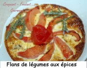 Flans de légumes aux épices Index -DSC_3907_12087