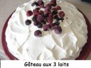 Gâteau aux 3 laits Index- mars 2009 129 copie