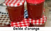 Gelée d'orangeIndex - DSC_6323_14714