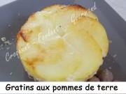 Gratins de pommes de terre Index DSCN2239_31925