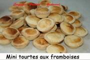 Mini-tourtes-de-fruits-rouges Index -septembre-2008-013-copie-1024x680