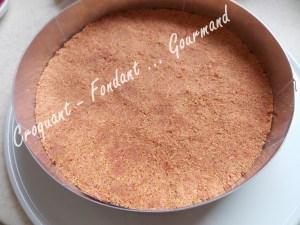 Cheesecake fraise-Tonka DSCN2870_32594