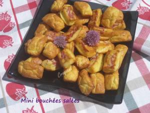 Mini bouchées salées IMG_5579_33661