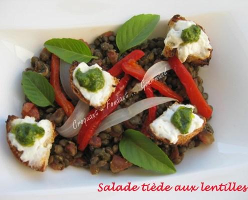 Salade tiède aux lentilles IMG_6054_35251 (Copy)