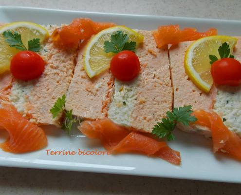 Terrine bicolore DSCN5687_36455 - Copie