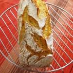 à vous de jouer Véro dit Nono pain au lait fermenté (6)